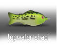 topwater shad